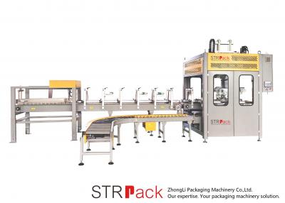 Pick & Place Case Packer